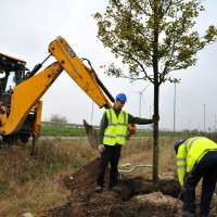 Apprentices planting 50,000 bulbs on the Leeds City Region Enterprise Zone